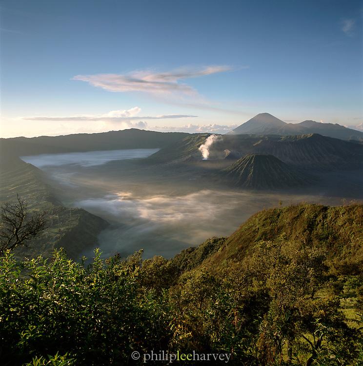 Tengger Semeru National Park, Java, Indonesia