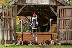 De Liedekerke-Meier Lara, BEL, Alpaga d'Arville<br /> CCIO 4* Boekelo 2019<br /> © Hippo Foto - Leanjo de Koster<br /> 12/10/2019