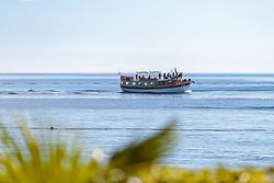 THEMENBILD - ein Ausflugsschiff mit Touristen an Bord, aufgenommen am 25. Juni 2018 in Porec, Kroatien // an excursion boat with tourists on board, Porec, Croatia on 2018/06/25. EXPA Pictures © 2018, PhotoCredit: EXPA/ JFK