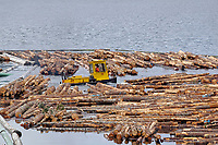 Logs sorting at Telegraph Cove, Vancouver Island, Canada   Photo: Peter Llewellyn