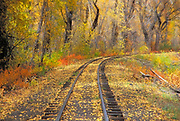 Fall color and train tracks, Cumbres & Toltec Scenic Railroad, Chama, New Mexico