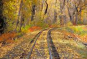 Fall color and train tracks, Cumbres & Toltec Scenic Railroad, Chama, New Mexico