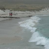 Tourists walk on a beach on Carcass Island in Britain's Falkland Islands.
