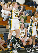 John A. Coleman starter Melody O'Connor (21) celebrates on the bench during the final seconds of her team's victory over Eldred in the Section 9 Class D girls' basketball championship game at Mount Saint Mary College in Newburgh on March 5, 2010.