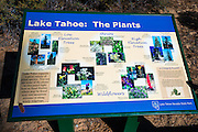 Interpretive sign, Sand Harbor State Park, Lake Tahoe, Nevada, USA