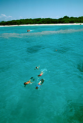 Australia, Great Barrier Reef, Lady Musgrave Island, Snorkeling, snorkelers, Photo: ausbri102.Photo copyright Lee Foster, 510/549-2202, lee@fostertravel.com, www.fostertravel.com