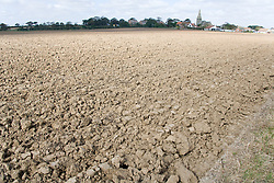 Clay soil in field at Mappleton; East Yorkshire; England