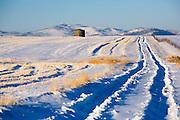 Cold winter morning near Helena, Montana.