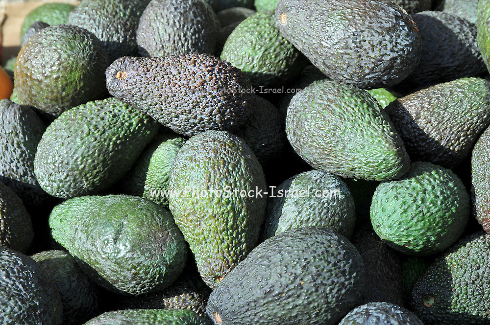 A pile of fresh avocados for sale at a market stall
