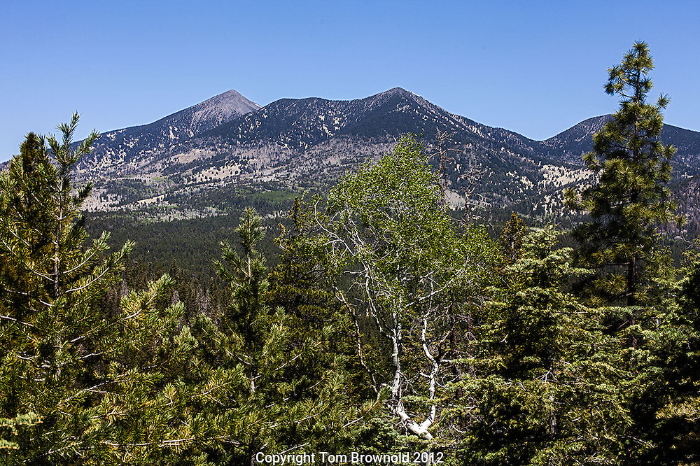 San Francisco Peaks from the dry lake hills
