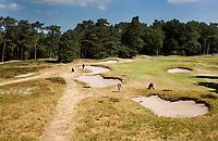 Bosch en Duin - Hole 8. Droogte op Golf Club de Pan. COPYRIGHT KOEN SUYK