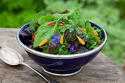 Salad and stir fry mix in deep blue Moroccan bowl