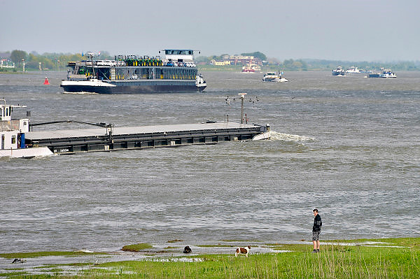Nederland, Waal, 7-5-2013Druk verkeer van binnenvaartschepen op de waal, rijn, vooral op en neer het duitse ruhrgebied en de haven van rotterdam.Foto: Flip Franssen/Hollandse Hoogte