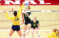 December 1, 2017; Stanford, California, USA; NCAA Volleyball First Round: Colorado State Rams vs Michigan Wolverines; Paulina Hougaard-Jensen (11) <br /> <br /> Photo credit: Kelley L Cox- KLC fotos