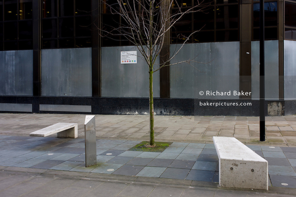 Surreal and pointless landscape of bench design and lone growing tree in a pedestrian street in central London.