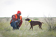 SHOT 5/9/20 8:57:13 AM - Various pointing breeds compete in the Vizsla Club of Colorado Licensed Hunt Test Premium at the Rocky Mountain Sporting Dog Club Grounds in Keenesburg, Co. (Photo by Marc Piscotty / © 2020)