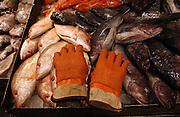 Fish and gloves at the Fulton Fish Market in Manhattan, NY. 2/7/2005