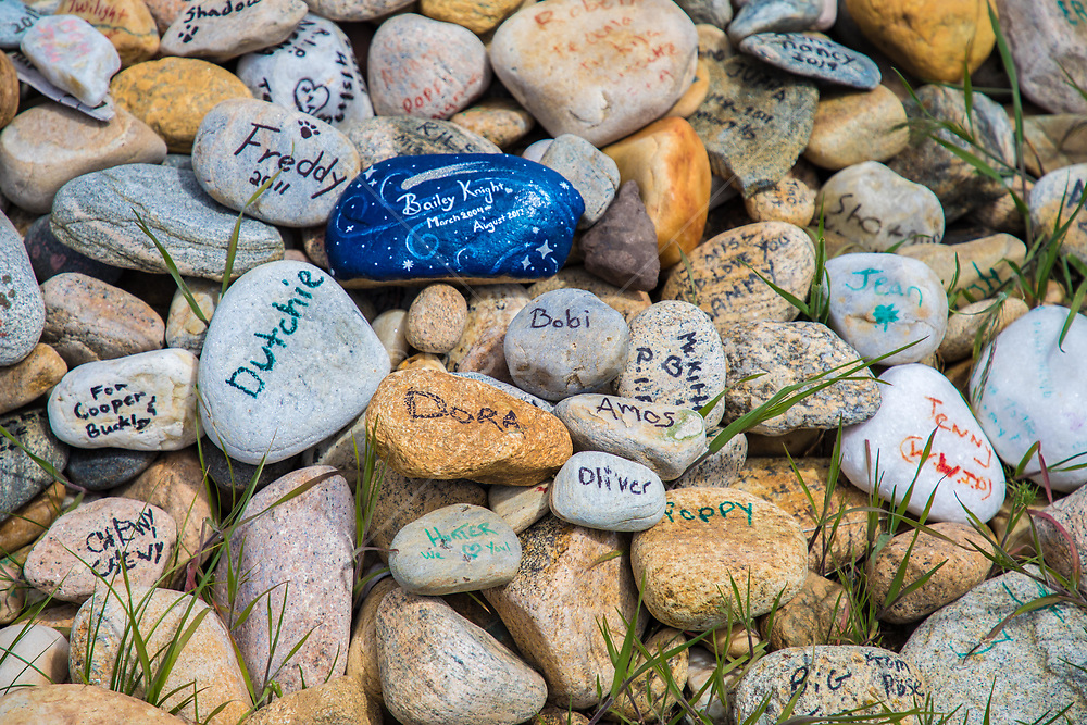 stones with names of pets who have passed away