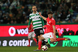 February 3, 2019 - Lisbon, Portugal - Benfica's Portuguese defender Ruben Dias (R ) vies with Sporting's forward Bas Dost from Holland during the Portuguese League football match Sporting CP vs SL Benfica at Alvalade stadium in Lisbon, Portugal on February 3, 2019. (Credit Image: © Pedro Fiuza/NurPhoto via ZUMA Press)