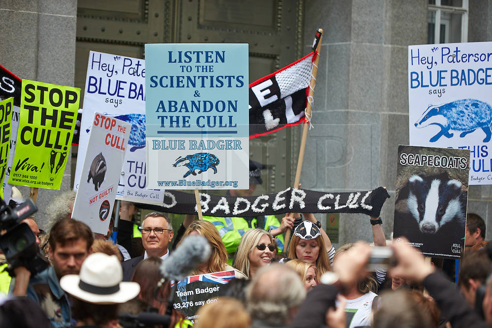 © Licensed to London News Pictures.  01/06/2013. LONDON, UK. Protesters, some dressed as badgers or other animals, march to the DEFRA offices on Millbank to try to stop the cull of badgers due to start today (Sat 1 June. Photo credit: Cliff Hide/LNP