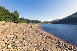 July 5, 2018 - Upper Derwent Valley, Derbyshire, UK - Upper Derwent Valley UK. Scenes this morning at Derwent Reservoir in Derbyshire show the extent the water level has dropped during the UK heatwave leaving a sun scorched shore line. (Credit Image: © Andrew Mccaren/London News Pictures via ZUMA Wire)
