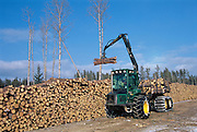 Timber harvesting<br /> Eastern Manitoba<br /> Manitoba<br /> Canada