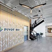 DGA- Pivot Bio