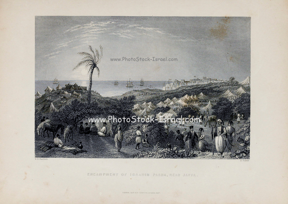 Encampment of Ibrahim Pasha, Jaffa from Volume 2 of Syria, the Holy Land, Asia Minor, &c. by Carne, John, 1789-1844; Illustrated by Bartlett, W. H. (William Henry), 1809-1854, and Allom, Thomas, 1804-1872 Published in London in 1837