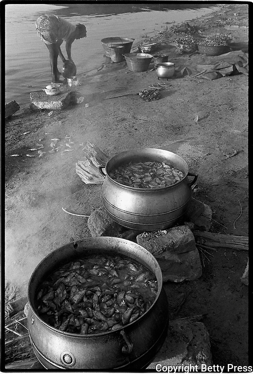 Each day that goes by and I am okay is a feast.  North African proverb<br /> <br /> A woman boils fish to make fish oil to sell in the market. Massina, Mali  1994