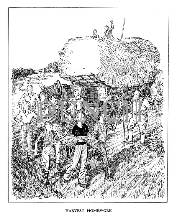 Harvest Homework