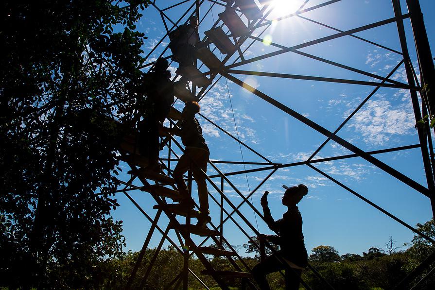 Kids climb up an observation deck to get a better view of the jungle.