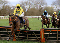 Diger Daudaie ridden by Abbie McCain clears a hurdle and wins the Abacus Decorators Lady Riders' Handicap Hurdle race at Uttoxeter Racecourse.