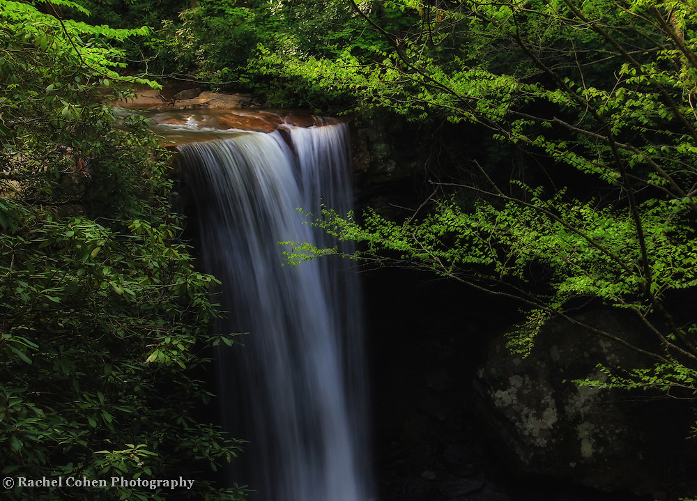 """""""Cool as a Cucumber""""<br /> <br /> Beautiful Cucumber Falls in springtime. Located in the scenic Laurel Highlands of Pennsylvania, in Ohiopyle State Park!!<br /> <br /> Waterfalls by Rachel Cohen"""
