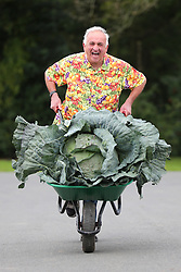 © Licensed to London News Pictures. 18/09/2015. Harrogate, UK. Picture shows Ian Neale from Newport with his first prize winning heaviest Cabbage at the Giant Veg competition at the Harrogate Autumn Flower show. Photo credit: Andrew McCaren/LNP