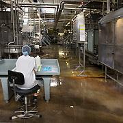 Nederland Giessen 26 augustus 2009 20090826 ..Serie over levensmiddelensector                                                                                      .HAK fabriek, productiehal. Werknemer ziet toe op het productieproces. .Employee checking production proces silver outings. ..Foto: David Rozing