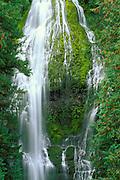 Proxy Falls, Cascade Mountains, Willamette National Forest, Oregon