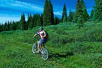 Mountain biking on Vail Pass, Colorado USA