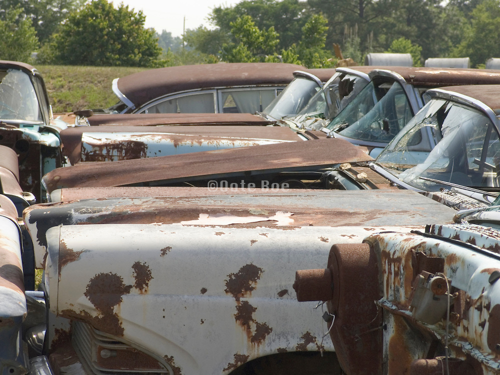 side view of classic cars sitting in a junkyard