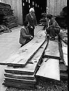 Arctic Expedition Select Timber.   (N49)..1980..04.11.1980..11.04.1980..4th November 1980..A member of an Arctic exploration group attended at Mallinsons Timber in Swords,Dublin to select timber.The timber was to be used in the construction of rafts which would be used to ferry equipment once the expedition got underway..The General Manager of Mallinsons,one of his carpenters and a member of the expedition are pictured selecting the timber to be used. Unfortunately we do not have their names, if you know them why not let us know at irishphotoarchive@gmail.com  and we will gladly include them.