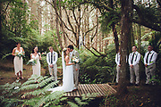 rural new Zealand wedding at matatoki on the farm with beautiful ceremony in native new Zealand forest felicity jean photography cool ideas for your wedding 2016/2017 flowers venue's nibbles dresses sign boards dressing up your pets props for photos ceremony styling photo booths bands cakes and more