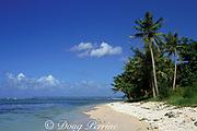 Cocos Island, Guam, USA, Micronesia, ( Western Pacific Ocean )