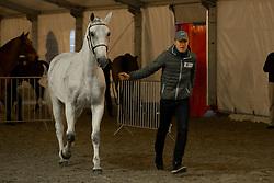 Chardon Bram, NED, <br /> Jumping Mechelen 2017<br /> © Sharon Vandeput<br /> 29/12/17
