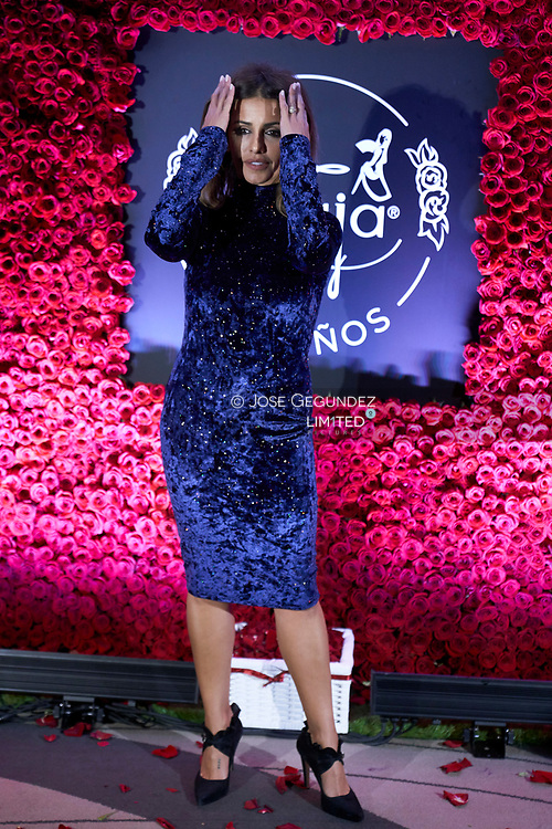 Monica Cruz attends the 'Maja' fragance 100th anniversary party at Westin Palace Hotel on October 16, 2018 in Madrid, Spain
