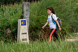 The fourth WeHike2ChangeDiabetes 2021 challenge promised to be a very special version! We have been walking in the beautiful regions of Babia en Bierzo (Spain). This time we walked parts of differents routes like the Senda de Bas, Nueva Senda Olvidada, Canales Romanos CN2, Camino Real and finally the last part of the camino Francés into Santiago. Day 6 - From San Paio - Plaza del Obradoiro, Santiago