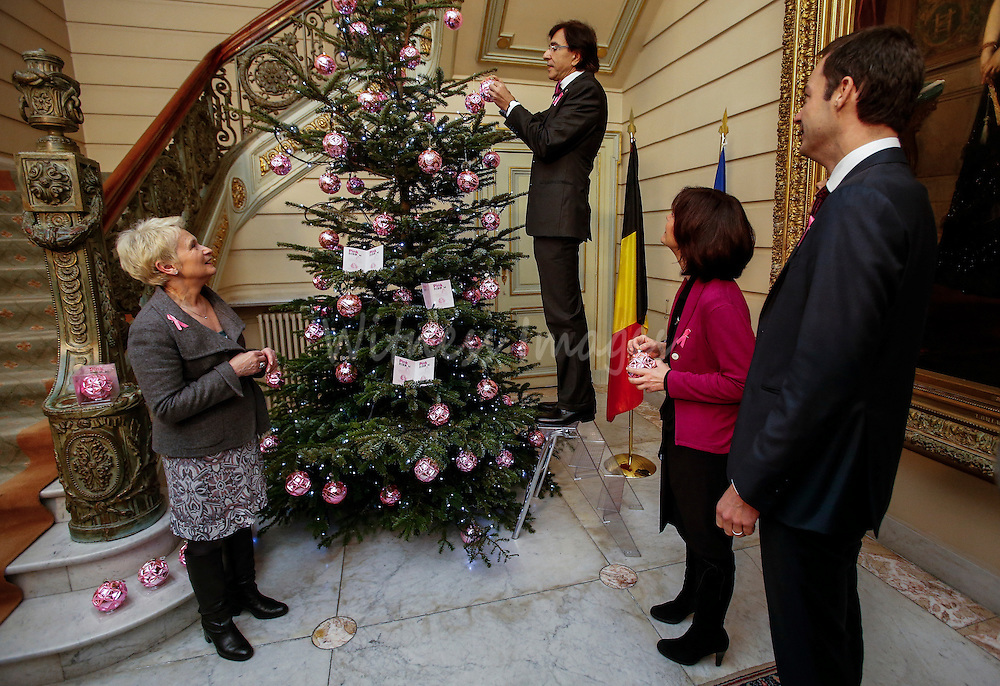 Inauguration of a Christmas tree decorated in the colors of the 'Pink Ribbon' campaign to support the battle against breast cancer at the Prime Minister's office, 16 Law Street (16 rue de la Loi / 16 Wetstraat) in Brussels, on December 12, 2013. BELGA PHOTO / Thierry Roge