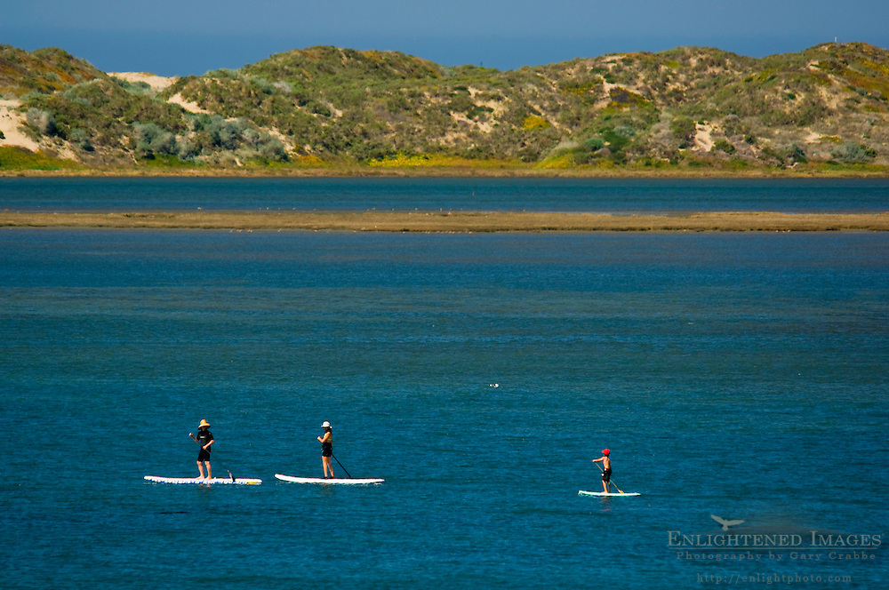 Family on paddle boards in the calm waters of Morro Bay, California
