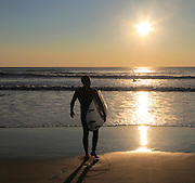 Surfer with board walking into sea, El Palmar beach, Vejer de la Frontera, Cadiz Province, Spain