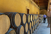 A man checks the oak barrels filled with Mezcal as they age under the derelict arches of the Hacienda de Jaral de Berrio in Jaral de Berrios, Guanajuato, Mexico. The abandoned Jaral de Berrio hacienda was once the largest in Mexico and housed over 6,000 people on the property and is credited with creating Mescal.