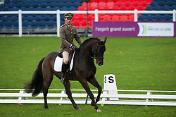 Riganelli Roberto (ITA) - Caledonian<br /> FEI World Championship for Young Horses Le Lion d'Angers 2012<br /> © Hippo Foto - Jon Stroud