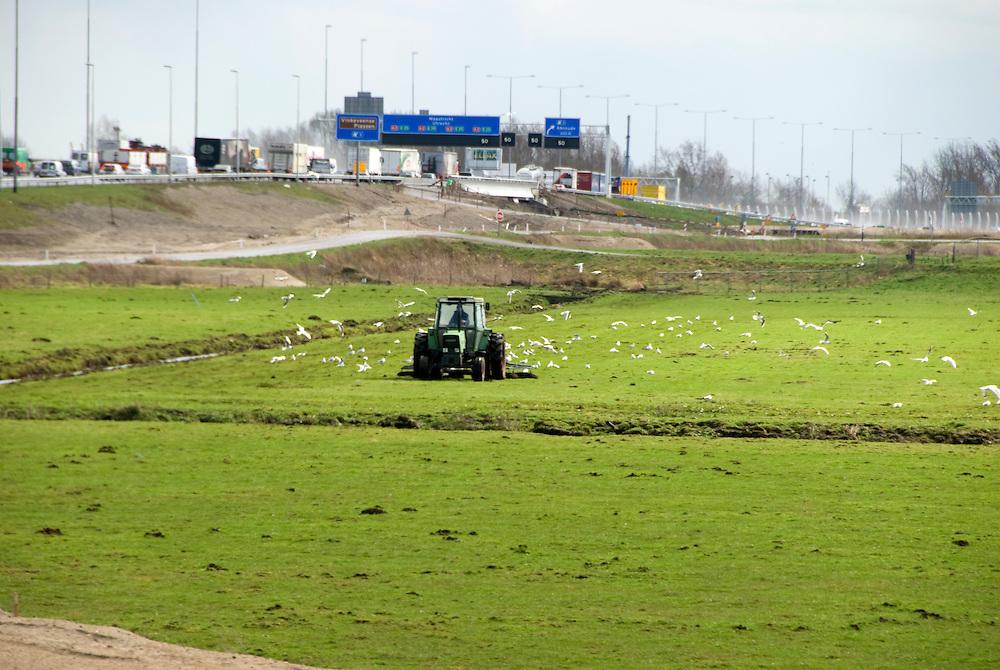 vecht, 31 maart, 2010.Boer aan het werk, pal langs de snelweg, onder Amsterdam. . (c)Renee Teunis.